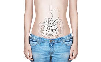 Digestion sana